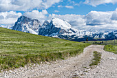 Hiking trail at Puflatsch on the Alpe di Siusi in South Tyrol, Italy