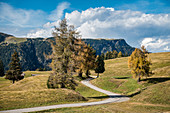 Autumn day on the Seiser Alm in South Tyrol, Italy