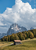 Impressive landscape on the Alpe di Siusi in South Tyrol, Italy