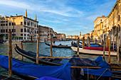 Morning on the Grand Canal, Venice, Veneto, Italy