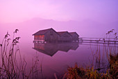 The three boathouses on the Kochelsee at sunrise, Upper Bavaria, Bavaria, Germany, Europe