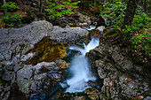 Small mountain stream in the Bavarian Forest, mountain torrent, Bavarian Forest National Park, Lower Bavaria, Bavaria, Germany