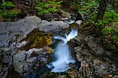 Kleiner Bergbach im Bayerischen Wald, Wildbach, Nationalpark Bayerischer Wald, Niederbayern, Bayern, Deutschland