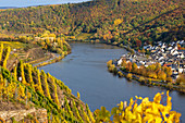 View over vineyards and Moselle to Lay, Moselle, Rhineland-Palatinate