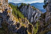 Abstieg von den Schartenköpfen auf das Wettersteingebirge, Oberammergau, Bayern,Deutschland
