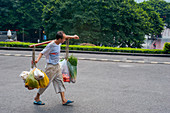 A man is carrying produce on a carrying pole, also called a shoulder pole, over the shoulders in Chongqing, China.