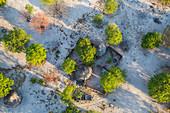 Aerial view of huts & village, Okavango Delta, Botswana, Africa