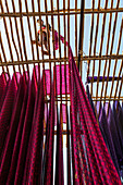 Sari Factory, Textiles dried in the open air, The textiles are hung to dry on bamboo rods, the long bands of textiles are about 800 metre in length, nr Jaipur, Rajasthan, India