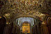 The ornate interior of the Baroque ecclesiastical Church of Santo Domingo de Guzman in the city of Oaxaca de Juarez, Oaxaca, Mexico.
