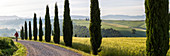 Man walking along dirt track lined with cypress trees, Capella di Vitaleta, Val d'Orcia, Tuscany, Italy. Model released.