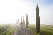 Cyclist on dirt road in early morning in Tuscany Italy. Model released.