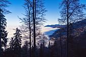 Unterhalb der Sonnenspitz im November, Kochel am See, Oberbayern, Bayern, Deutschland, Europa