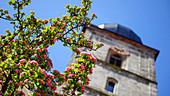 Spring in Forchheim, Upper Franconia, Franconia, Germany, Europe