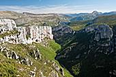 Gorges du Verdon, Alpes-de-Haute-Provence (04), Provence-Alpes-Cote d'Azur region, France