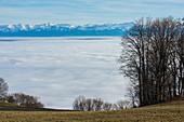 Swiss Alps in winter with fog over Neuchatel lake. Switzerland