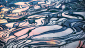 duoyishu rice terrace at sunrise, yuanyang rice terraces, Honghe Yunnan, Southern China, China