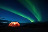 Illuminated tent with northern Lights,Qaleraliq Glacier Camp, Greenland