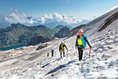 group of climbers on the track that leads to Punta Penia, the highest peak of the Marmolada, marmolada glacier, Trentino alto Adige, Dolomites, Italy