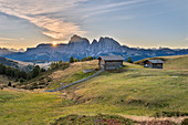 Alpe di Siusi/Seiser Alm, Dolomites, South Tyrol, Italy. Sunrise on the plateau of Bullaccia/Puflatsch. In the background the peaks of the Sella and  Sassolungo