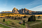 Alpe di Siusi/Seiser Alm, Dolomites, South Tyrol, Italy. Sunset on the Alpe di Siusi/Seiser Alm with the peaks of Sassolungo and Sassopiatto