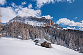 Alta Badia, Bolzano province, South Tyrol, Italy, Europe. Winter on the Armentara meadows, above the mountains of the Zehner and Heiligkreuzkofel