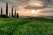 Baccoleno farmhouse at sunset in Siena Province, Tuscany, Italy