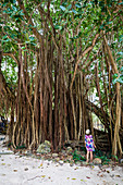 Woman admiring the tree trunks of tall tropical trees in the rainforest, Ile Aux Cerfs, Flacq, Indian Ocean, Mauritius