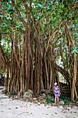 Frau, die die Baumstämme der hohen tropischen Bäume im Regenwald, Ile Aux Cerfs, Flacq, Indischer Ozean, Mauritius bewundert