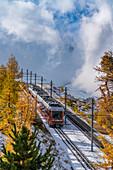 Gornergrat Bahn train in the autumnal landscape, Zermatt, canton of Valais, Switzerland