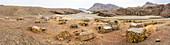 Panoramic of huts in the village of Asso Bhole along Wadi Saba canyon, Dallol, Danakil Depression, Afar Region, Ethiopia, Africa