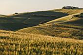 Hills at sunset, Pesaro Urbino province, Marche, Italy