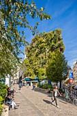 France, Paris, Rue d'Aboukir, vegetal wall by Patrick Blanc
