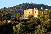 France, Var, Rayol Canadel sur Mer, Domaine du Rayol, Mediterranean garden, property of the Conservatoire du Littoral