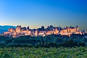 France, Aude, Carcassonne, medieval city of Carcassonne listed as World Heritage by UNESCO
