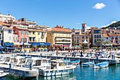 France, Bouches du Rhone, Cassis, the port of the city, the Quay Jean Jacques Barthélemy, boats of traditional fishing called locally Pointu