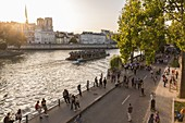 France, Paris, the banks of the Seine listed as World Heritage by UNESCO, the Notre Dame Cathedral on the Ile de la Cite since the quay of the City hall