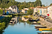 France, Deux Sevres, Marais Poitevin, Green Venice, Coulon, labelled Les Plus Beaux Villages de France (The Most Beautiful Villages of France), typical market gardening house on the banks of the Sevre Niortaise