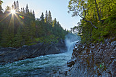 Morning sun at the Formofossen waterfall near Grong, Nord-Troendelag, Norway, Europe