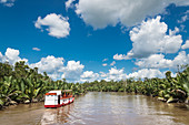 Tour boat on river in Tanjung Puting National Park, Borneo Island, Indonesia, Southeast Asia, Asia