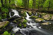Selke, Selkefall, Fluss, Wald, Harz, Sachsen-Anhalt, Deutschland, Europa\n