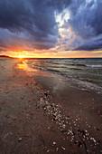 Sonnenuntergang, Strand, Buhne, Ostsee, Zingst, Prerow, Mecklenburg-Vorpommern, Deutschland, Europa\n