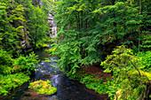 Kamnitz, Fluss, Pfad, Wanderweg, Mezni Louka, Nationalpark, Böhmische Schweiz, Tschechien, Europa\n