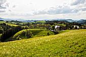 Hilly landscape and flower meadow, near St Märgen, Black Forest, Baden-Württemberg, Germany