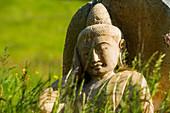 Buddha statue in flower meadow, Black Forest, Baden-Württemberg, Germany