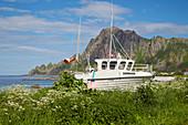 Discarded fishing trawler at the port of Bleik on Andoeya, Vesteralen, Nordland, Norway, Europe