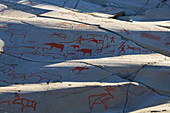 Rock carvings in Alta, UNESCO World Heritage Site, Finmark, Norway, Europe