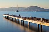 France, Var, Saint-Tropez, pontoon in the bay of Canebiers
