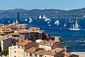 "France, Var, Saint-Tropez, district Ponche, the Old Tower, the traditional yachts on the occasion of the "" Voiles de Saint-Tropez"""