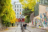 France, Paris, Montmartre, typical staircase rue Jean Baptiste Clement