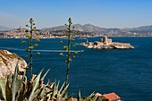 France, Bouches du Rhone, Marseille, Calanques National Park, archipelago of Frioul islands, the Chateau d'If and the city of Marseille in the background